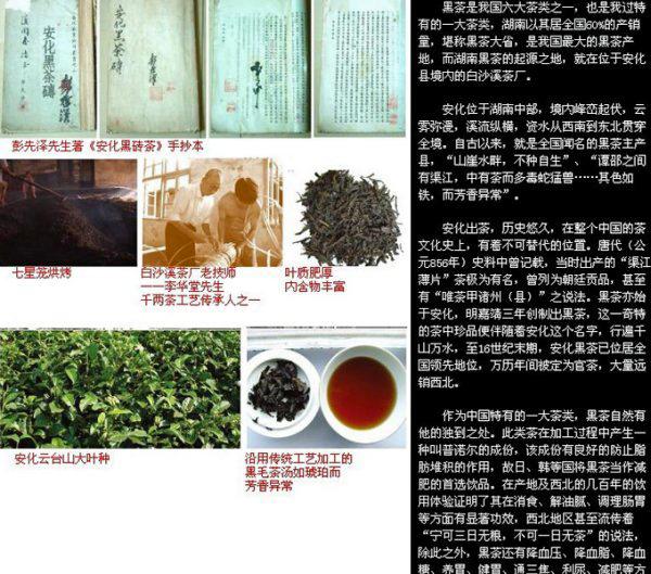 湖南省の黒茶(白沙渓)